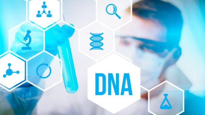 Dịch vụ chiết xuất DNA của công ty ncppb