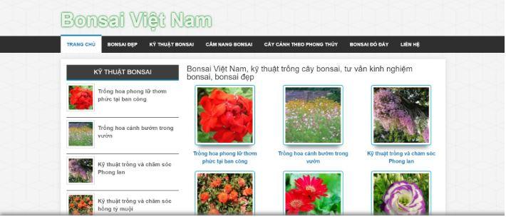 Bonsaivietnam.com.vn.