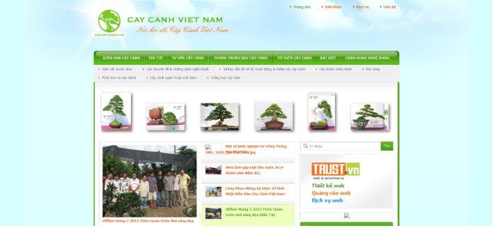 Caycanhvietnam.com
