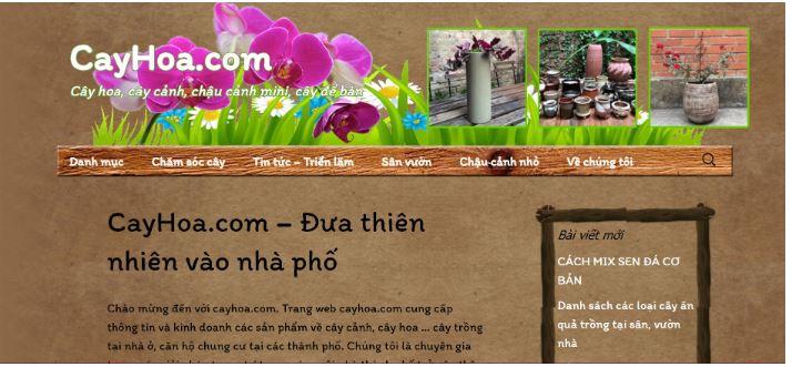 Cayhoa.com.