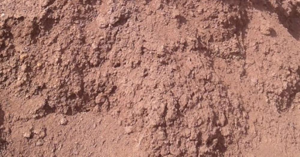 Đất phù sa hình thành từ đất thịt và đất mùn