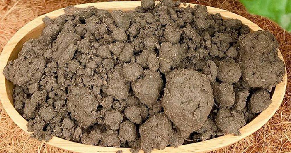 Đất thịt bao gồm cát, mùn và sét